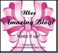 amazingblog1_thumb