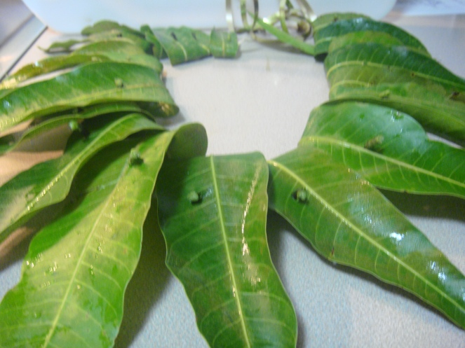 Mango Leaves threaded in to a Thoranam.