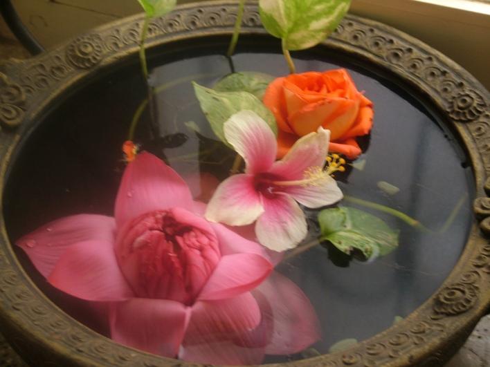 Flowers in the Terracota Uruli.