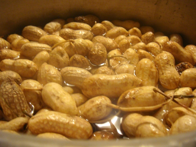 Hot Steamed Jumbo Peanuts!